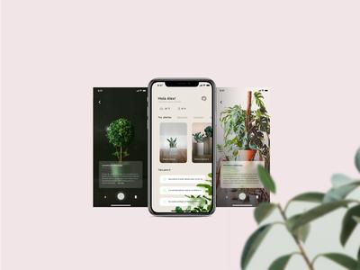 Plant App AR