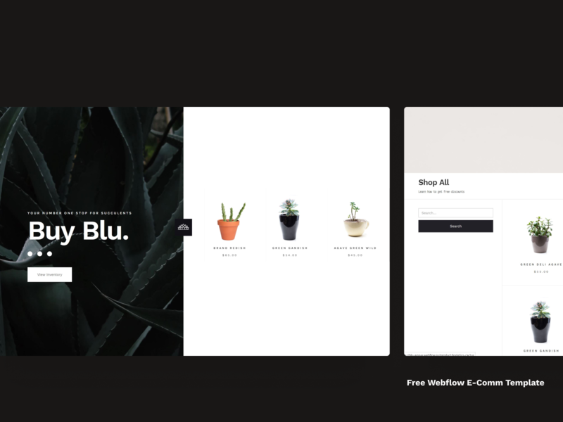 Blue Agave - Free Webflow Ecom template to clone