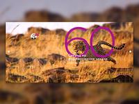 Site FCG slider