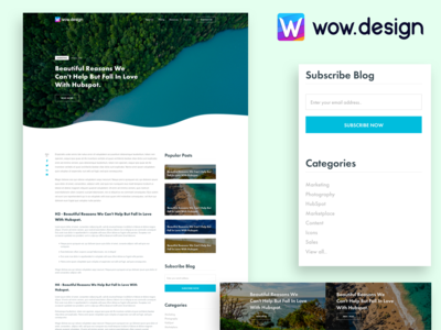 Blog Post/Article comments subscribe form poster previous nex categories uiux ui popular listing post subscribe