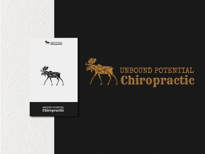 Unbound Potential Chiropractic