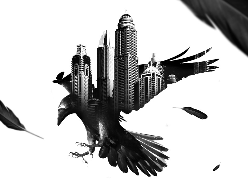 Raven doble exposicion cuervo bird black and white double exposure raven
