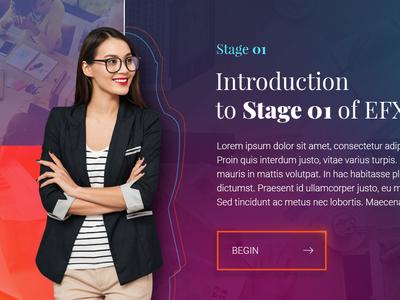 EFX 01 webapp colorful elearning education