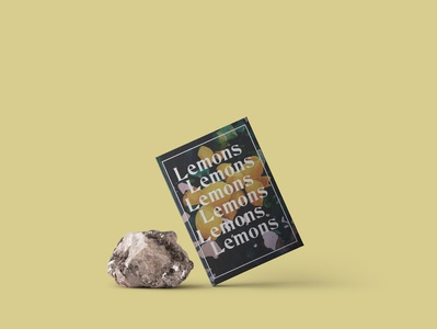 "Book cover of  ""Lemons"""