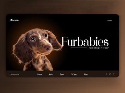 Online Pet Shop Website mobile ui lettering ios type web vector branding typography design illustration blue designstudio vibrant ux animation ui