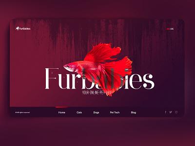 Online Pet Shop Website finance maroon lettering website type web flat ux vibrant branding vector logo typography design illustration mobile ui designstudio animation ui
