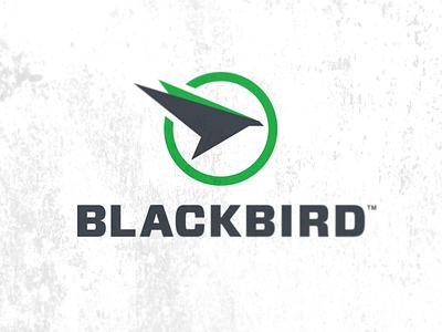 Bird logo bird abstract green black falcon eagle hawk circle logo icon