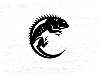 Iguana logo iguana c logo icon animal illustration circle design