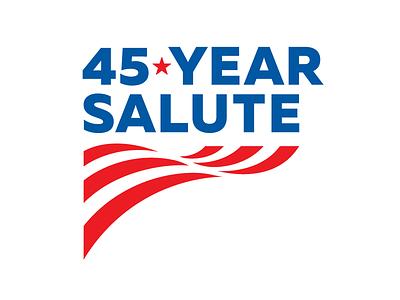 Anniversary Promotion Logo typography promotional anniversary star usa patriotic flag icon branding design illustration logo