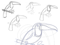 Fs dbl toucan attachment2