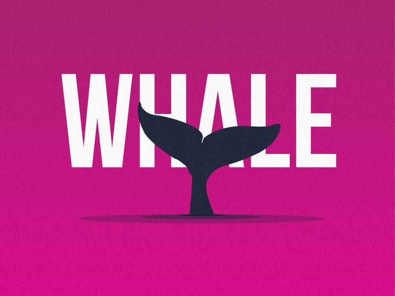Experiments- 03 whale dribbble vector minimal illustration flat dribbleinvite design