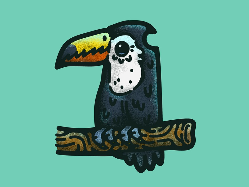 Toucan for the night bird toucan illustration illustrations decoration cartoon design vector doodle