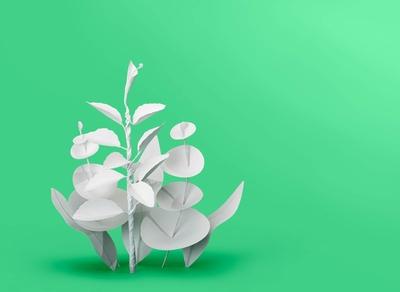 Mindshifts / Green