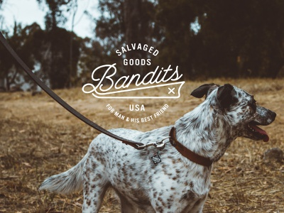 Bandits Salvaged Goods badge mark logo made in usa scoundrel dogs leather hand crafted salvaged goods bandits