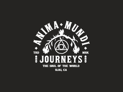 Anima Mundi Journeys anima mundi california typography logos branding