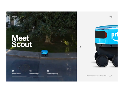 Delivery Robot Interaction