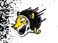 Tiger Skee