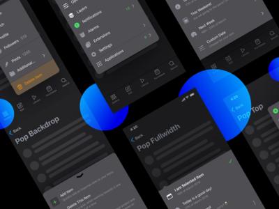 iOS Menu Dark UI Popover