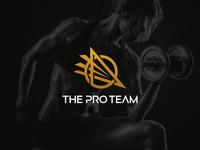 The Pro Team Logo Concept D identitydesign logos logo design logodesign logo branding design branding brand identity designer brand identity design brand identity