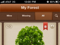 My forest   all