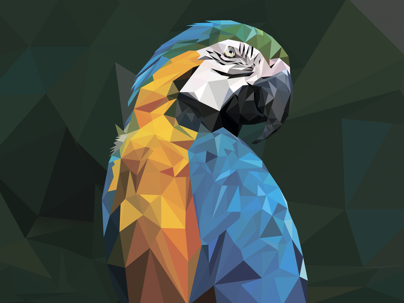 Low Poly Parrot web photoshop bird parrot lowpolyart illustration design vector lowpoly