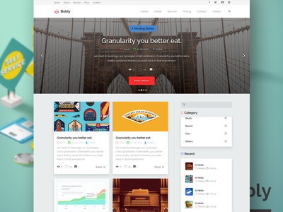 Bubly - A Pleasant Looking Multipurpose HTML Template
