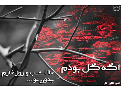 Amir Tataloo flower singer amirtataloo tataloo typography edit graphic design graphic design