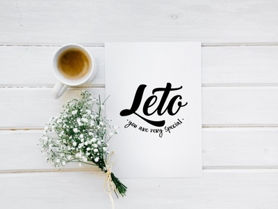 Logo for flower shop flower light black minimalism designer illustration vector branding logo logodesign design