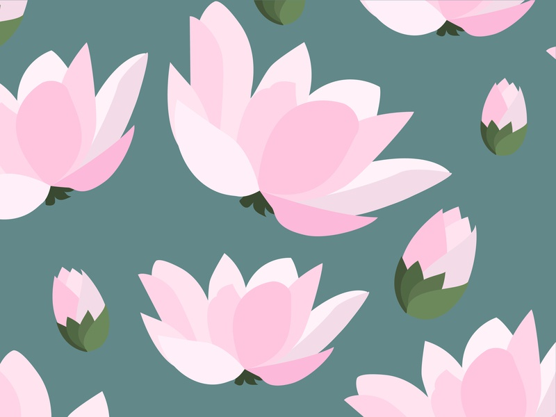 Lotus Pattern floral pink vector illustration design vector pattern flowers east lotus flower lotus