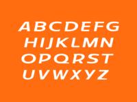 Tiger Sans