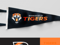 Tigers montage1