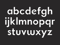 Type Trial