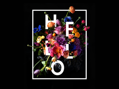 Hello  Dribbble! design art ux ui branding illustration design designer typography art photoshop