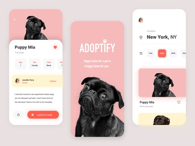 Pet Adoption App - Summary