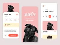 Pet Adoption App - Summary