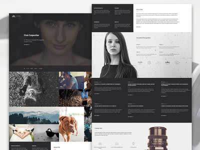 Altius | One Page Template for Photographers photography web design single page one page themeforest