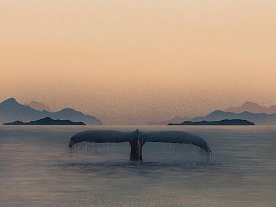 Dream Whale dream sunrise water animal whale ocean fish sea 2d
