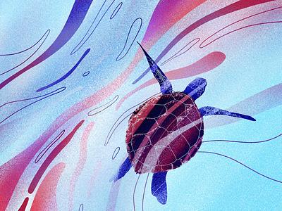 Turtle animation procreate underwater gradient digital art emotion 2d noise light illustration fantasy dream sea ocean turtle