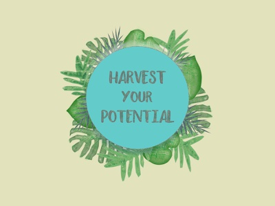 Harvest Your Potential logo designer colour art potential harvest web design