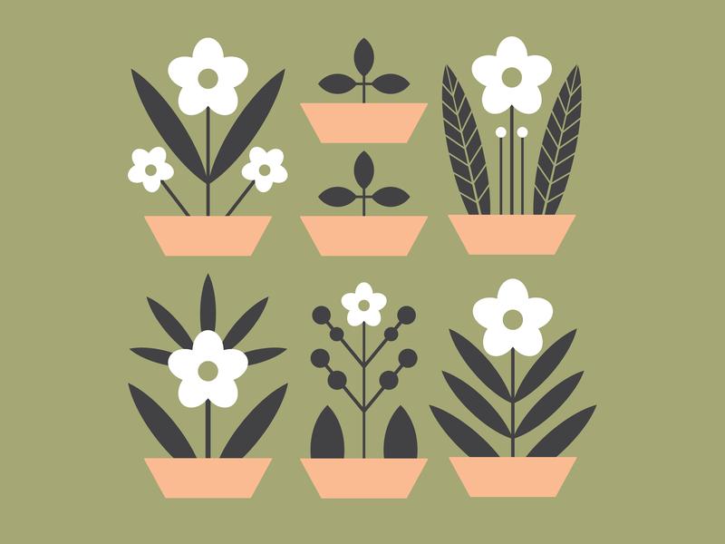 Flowerpots illustration flat digital illustration digital art flat design flat art scandinavia flowerpot flower illustration floral motifs design vector illustration