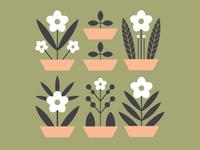 Flowerpots illustration
