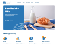 Fast redesign 4 Irbit dairy plant