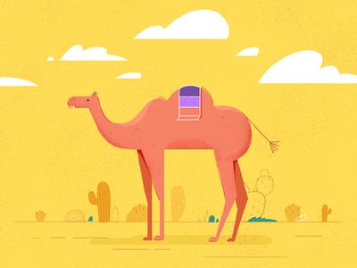 carl the camel.