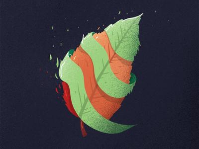 leaf in transition.