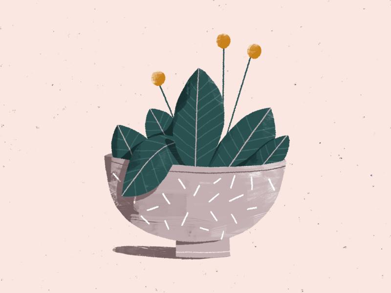 a plant... again. styleframe plant texture photoshop 2d illustration