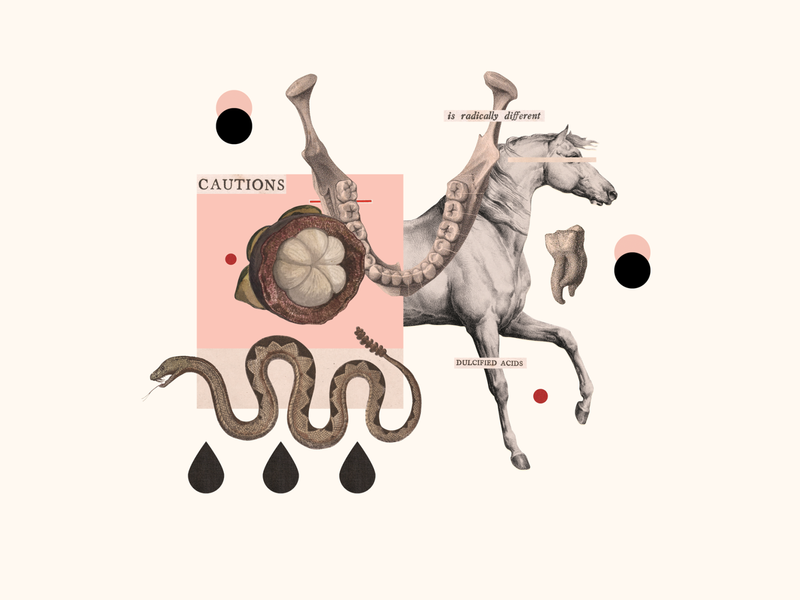 310 illustration collage