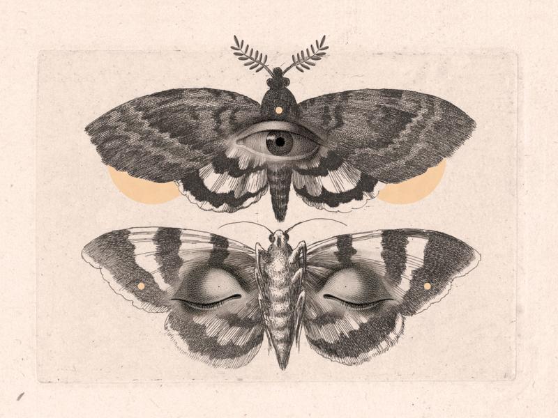 Para ver, cierra los ojos illustration collage
