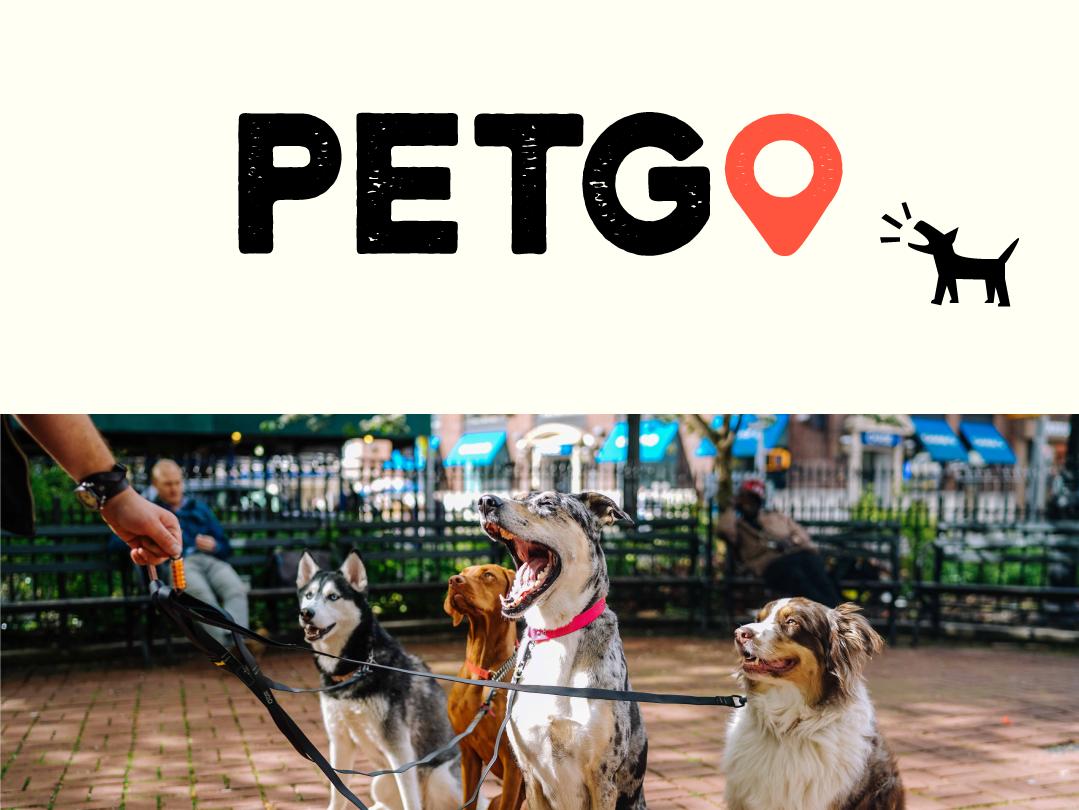Petgo Logo Design flat ui icon logo illustration identity design design branding