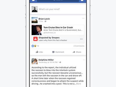 Fake News on Facebook facebook
