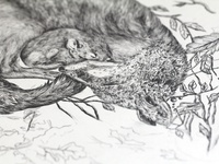 Fox & mouse pencil illustration